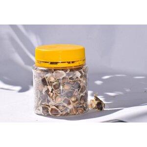 A jar of Moringa seeds