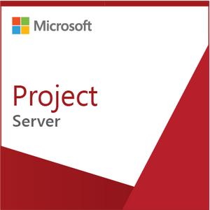 Microsoft Project Server 2019 - License - 1 user CAL - Open License Program Single Language NL