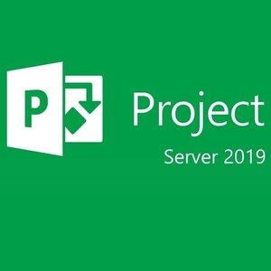 Microsoft Project Server 2019 Single Language Open License Program NL